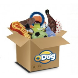 15504 - KIT BRINQ MAIS DOG C/30