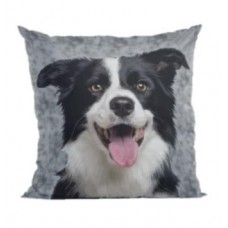 19795 - ALMOFADA BORDER COLLIE P (35X35)